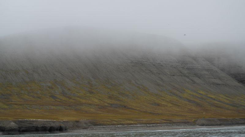 Ikke den høyeste delen av lyngefjellet men del av platået opp mot toppen. Sett fra sjøen utenfor Beisarhytta.