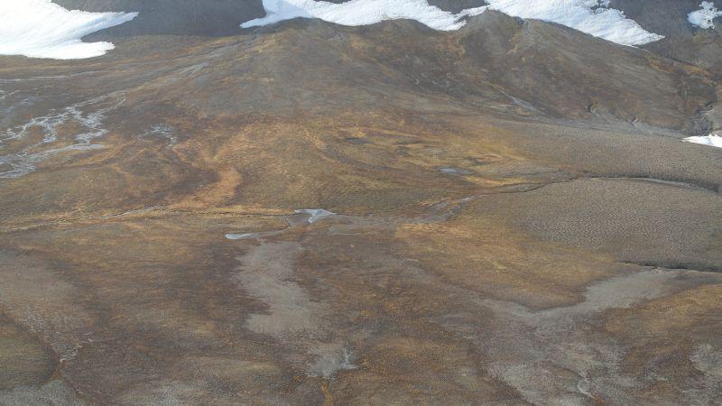 Midtdelen av Bjørnsletta