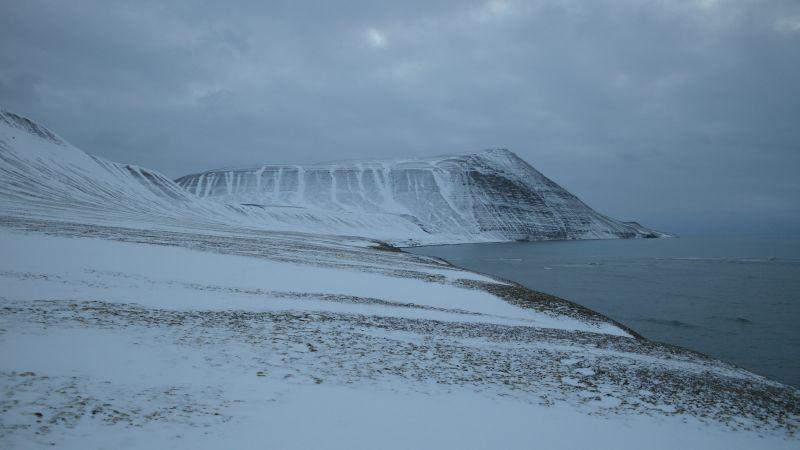 I tidlig vinterdrakt, sett fra nordsiden.