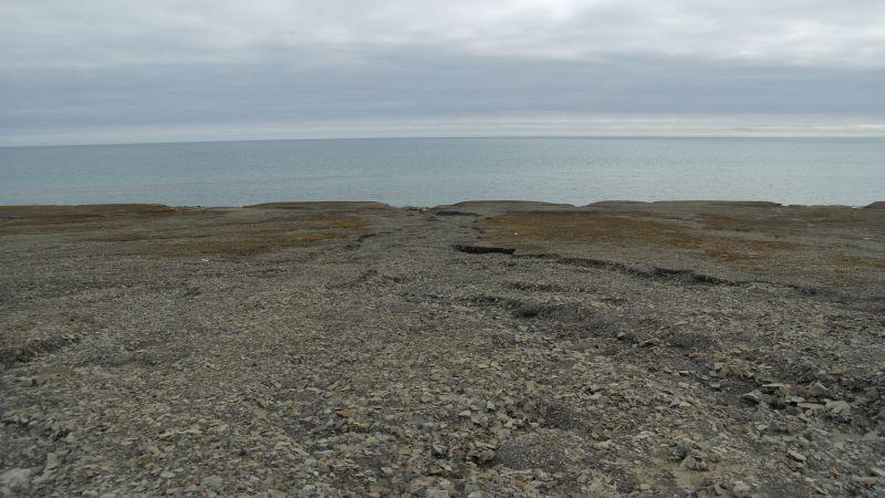Omtrent midt på stranda