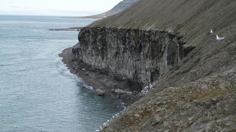 Fuglefjell10