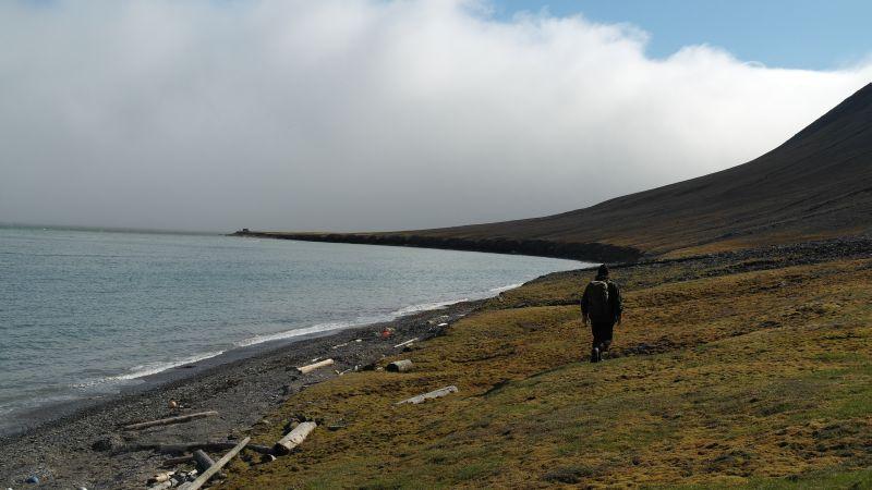 Langs stranda ved Tovikbukta.