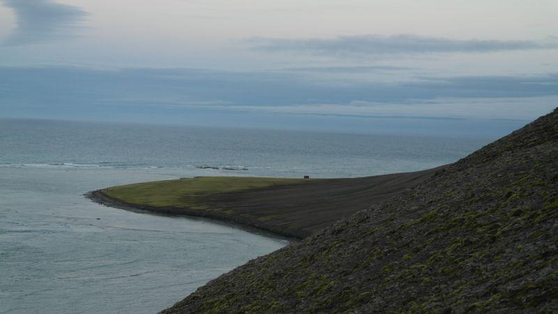 Tovikbukta og Kodoedodden sett fra platået mellom Bekkeskaret og Malmskaret.