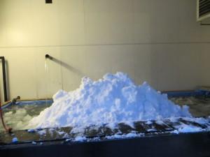 og så var tinekaret fullt av rein sne til tining.. bare lykken..