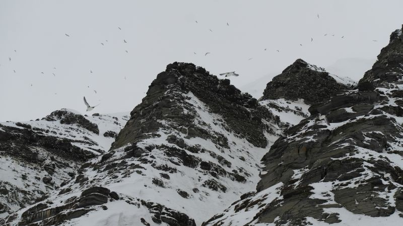 Fuglefjellet under Kollerfjellet.