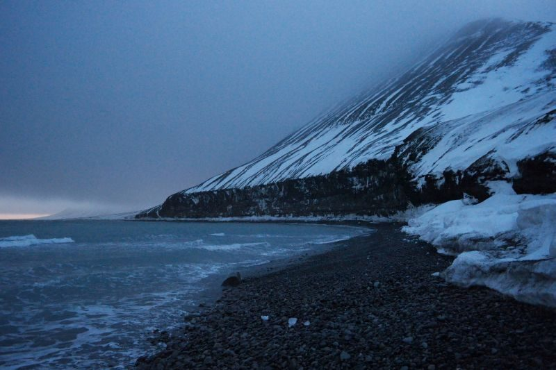 Det er mye liv i Krykjeberget allerede, men det er Havhesten som hersker alene der foreløpig.